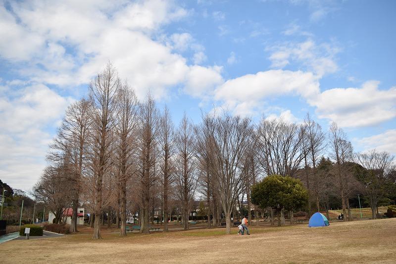 大崎公園の広場