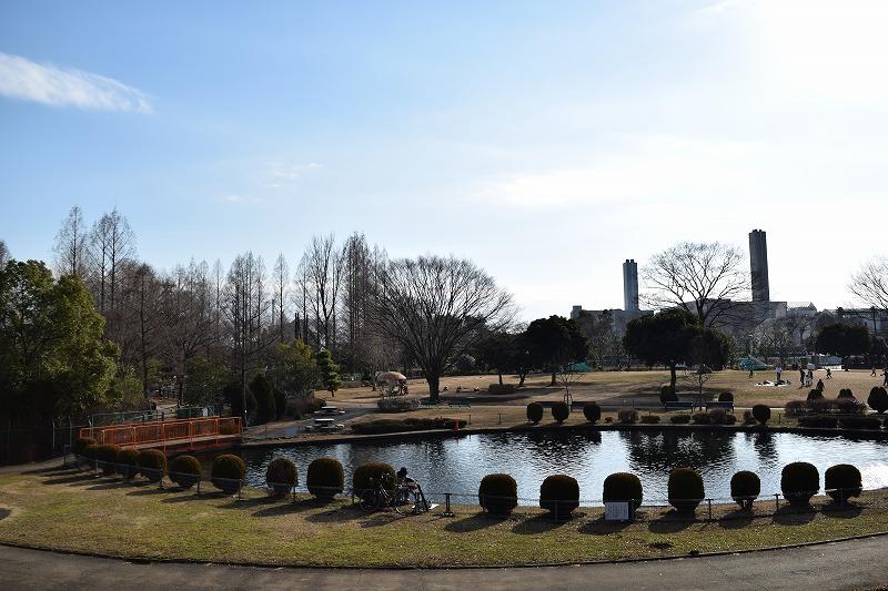 大崎公園 釣りの出来るお池 無料