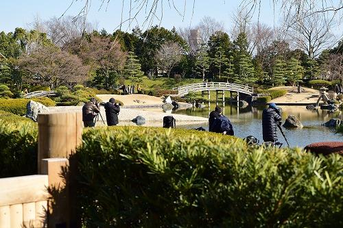 花田苑で野鳥撮影する人々