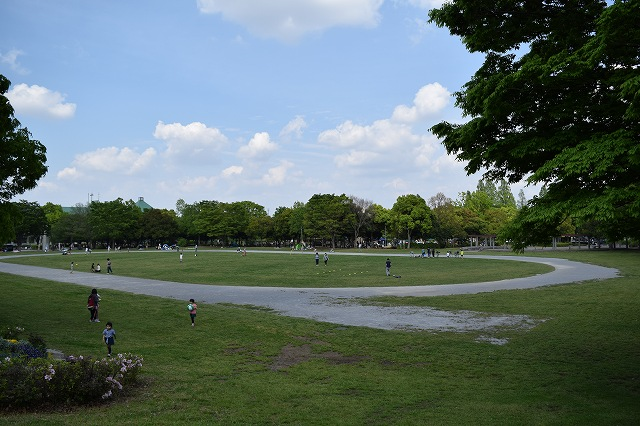 庄和総合公園 グラウンド