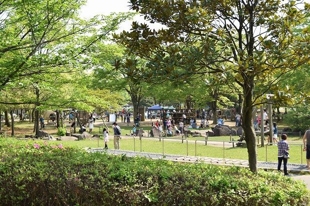 庄和総合公園 アスレチック遊具