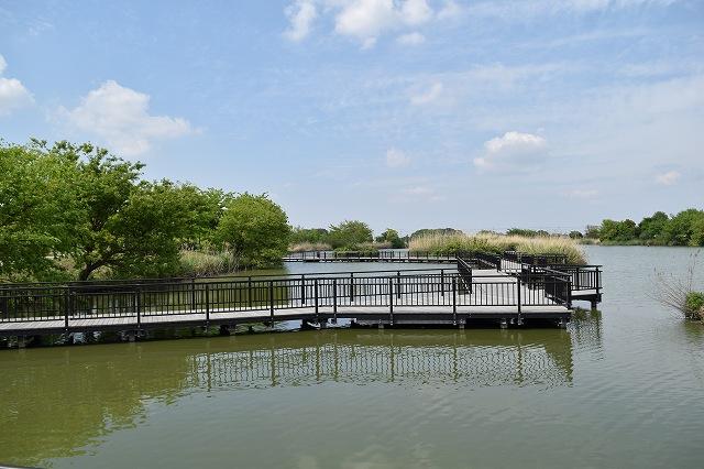 まつぶし緑の丘公園 水辺ゾーン