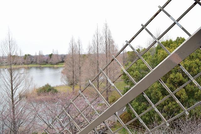 松伏総合公園 ランドマークの風車からの眺望