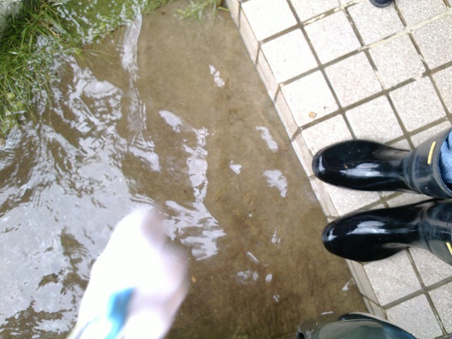 コシタツ家 大雨