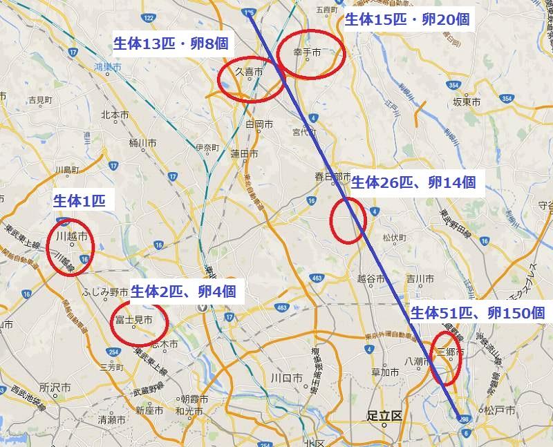 埼玉県内セアカゴケグモ 発生場所