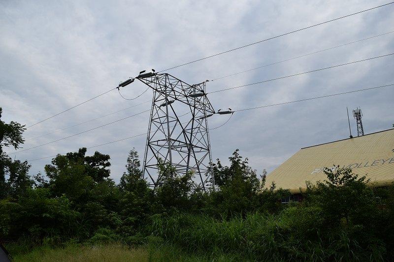 上の原キャンプ場 高圧電線
