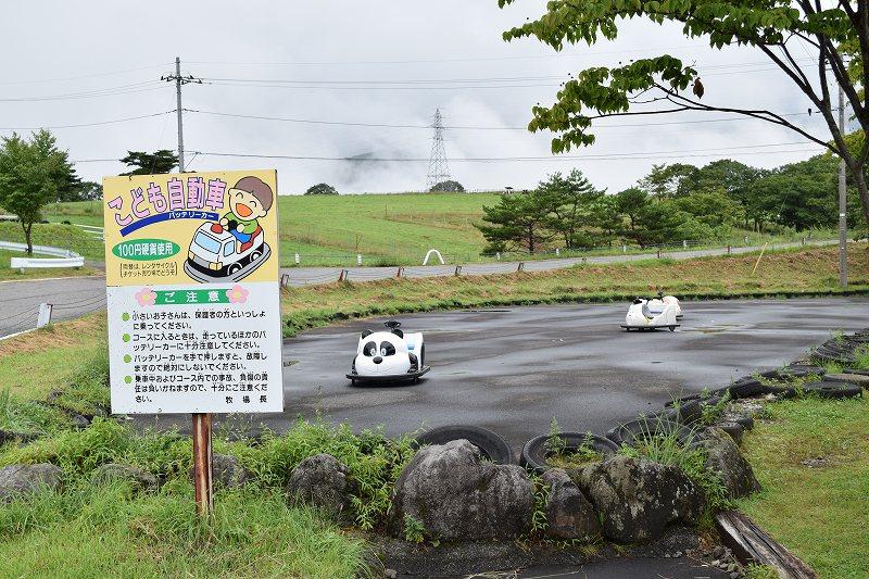 大笹牧場 ゴーカート