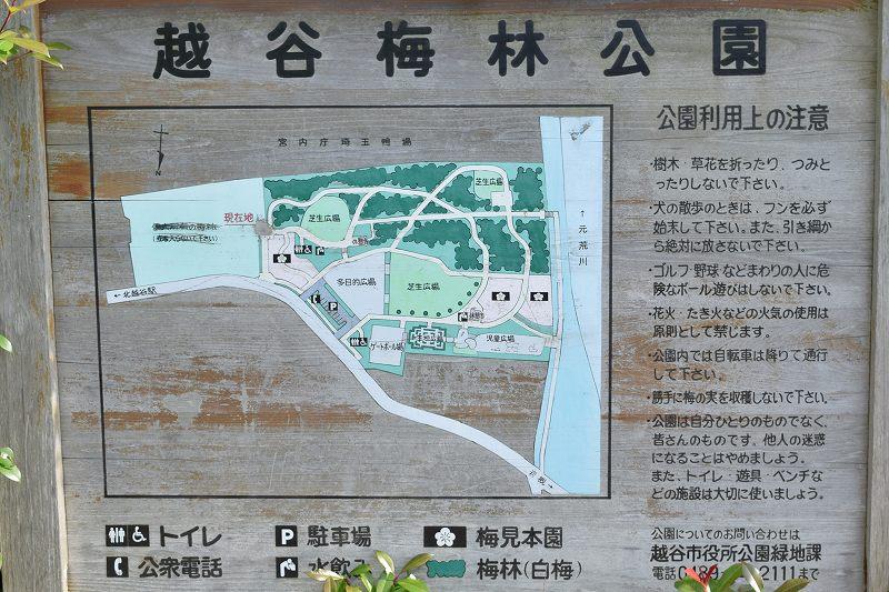 越谷梅林公園案内図
